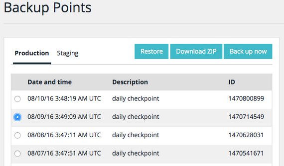 WP Engine - Backup Points