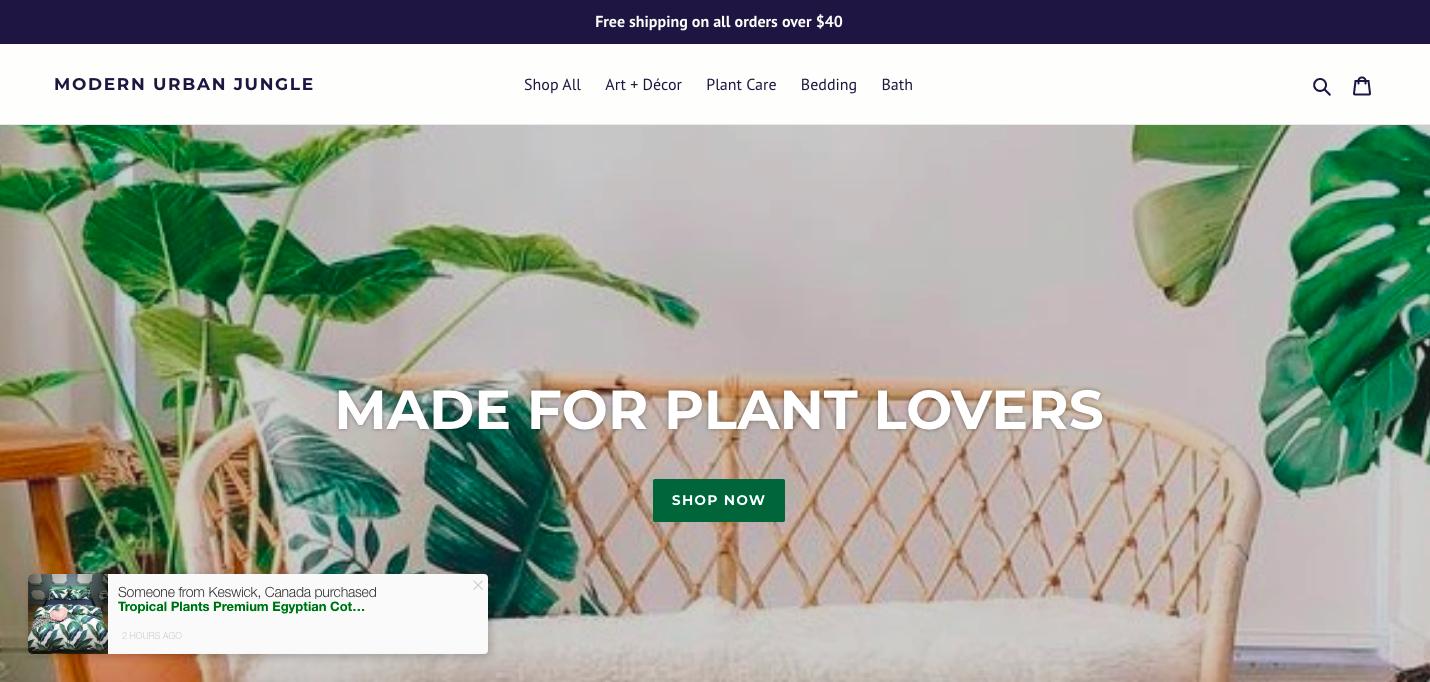 Modern Urban Jungle ecommerce website design
