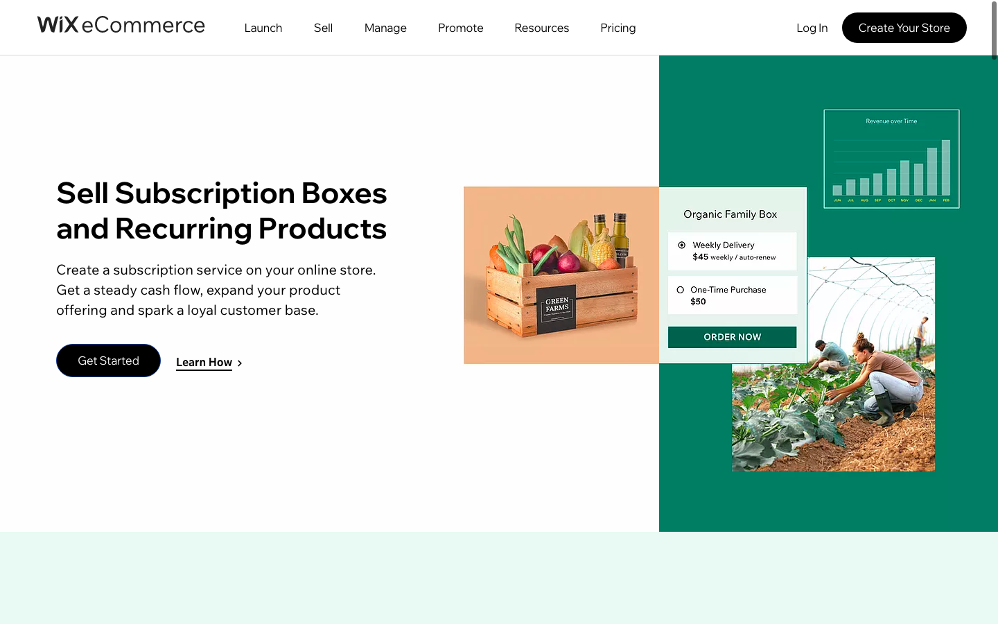 Subscription site on Wix eCommerce